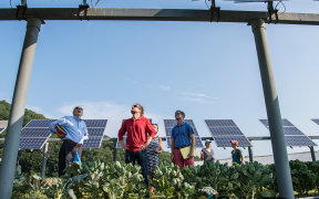 Australia backs microgrid studies for remote and rural communities